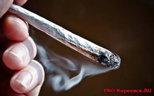 Житель Болохово осужден за незаконный сбыт наркотиков